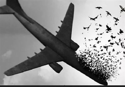 سرودههایی در سوگ جانباختگان هواپیمای اوکراینی: «پرندهها همه در آسمان غبار شدند...»