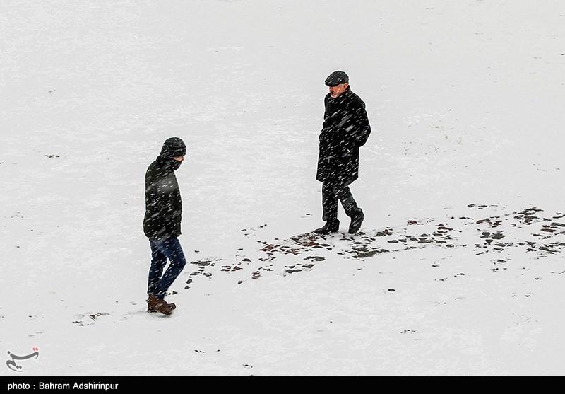 هواشناسی ایران 98/10/27|برف و باران کشور را فرا میگیرد/تهران برفی میشود