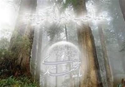 تفسیری از امام جواد (ع) درباره کیفیت حضور یاران امام زمان در عصر ظهور