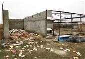 باغ وحش ارومیه؛ مخروبهای که انتظار حیوانات پردیسان را میکشد+فیلم