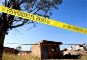 29 Bodies Unearthed from Mexican Mass Grave