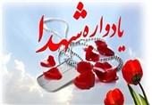یادواره 64 شهید ورزشکار خراسان جنوبی برگزار میشود