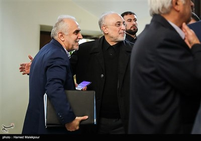 علیاکبر صالحی رئیس سازمان انرژی اتمی و فرهاد دژپسند وزیر اقتصاد در حاشیه جلسه هیئت دولت