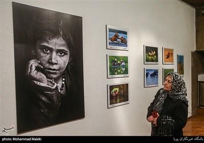 افتتاحیه هفتمین جشنواره بین المللی عکس خیام