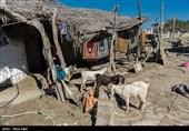 سردی بازار همدردی با سیلزدگان در همدان؛ اصناف پای کار نیستند
