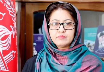 «انوری»: مردم به روند صلح بیاعتمادند/ آمریکا در روند صلح افغانستان تأثیرگذار است/ مصاحبه