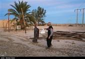 خسارت 746 میلیاردی سیل به بخش کشاورزی سیستان و بلوچستان