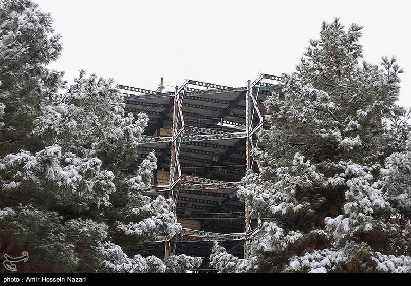 بارش برف در شیراز؛ کاهش 4 تا 12 درجهای دما در استان فارس + جدول