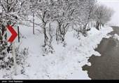 ارتفاع بارش برف در اردبیل به 10 سانتیمتر رسید؛ کاهش محسوس دما در شب