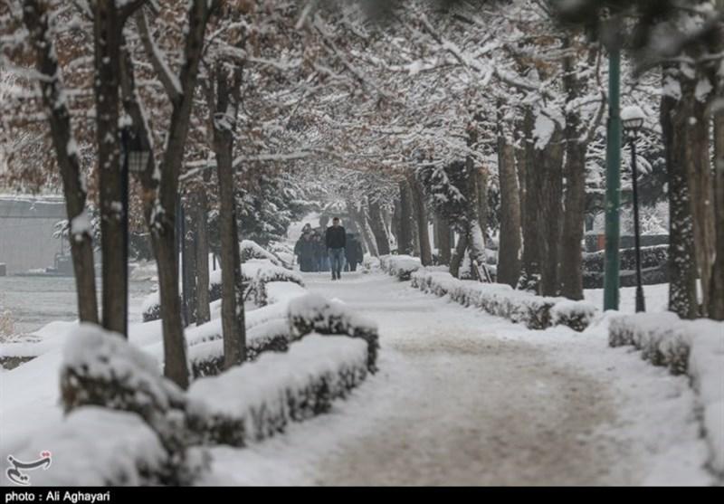 بارش برف مجددا ارومیه را سفید پوش کرد