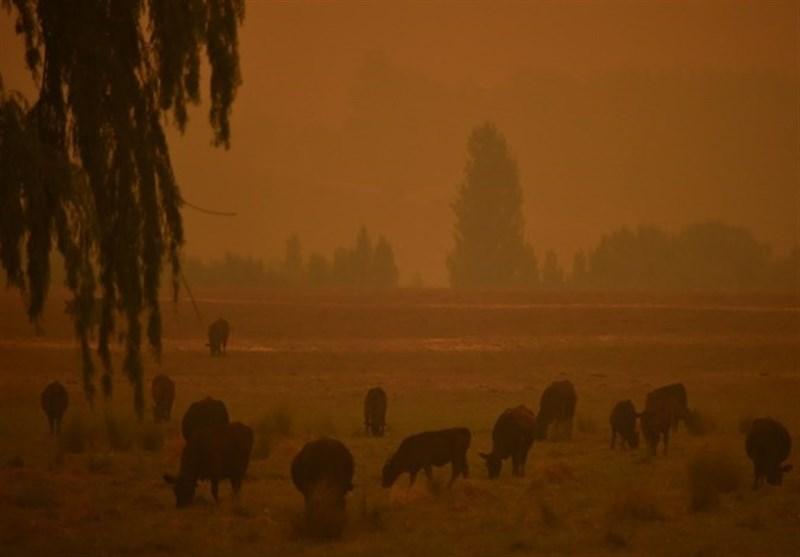Dust Storms, Giant Hail Batter Bushfire-Weary Australia