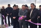 نجات دشت ممنوعه بحرانی کبودرآهنگ با افتتاح نیروگاه خورشیدی/ 107 نفر مشغول به کار شدند