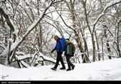 هشدار جمعیت هلال احمر به کوهنوردان ارتفاعات شمیرانات/ تجهیزات مناسب زمستانی همراه داشته باشید