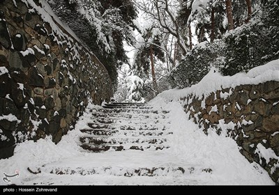 Winter Snow Covers Iranian Capital