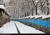 هواشناسی ایران 98/11/11| آغاز بارش برف و باران گسترده از بعدازظهر امروز