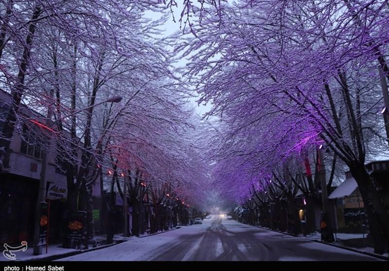 برف زمستانی در اقلید استان فارس به روایت تصویر