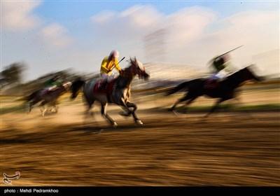 بیست و ششمین جشنواره اسب اصیل عرب - اهواز