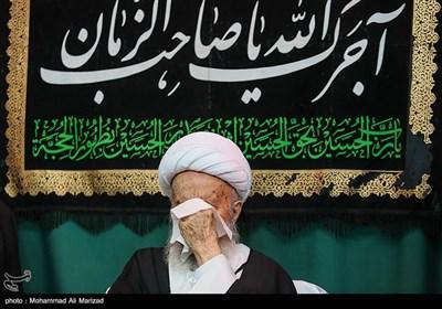 آیتالله مکارم شیرازی مرجع تقلید شیعیان