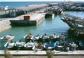 """تمام شناورهای صیادی استان بوشهر به """"ردیاب"""" مجهز میشوند"""
