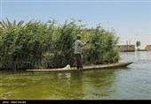 اجرای طرح حمایت از معیشت پایدار ماهیگیران تالاب شادگان
