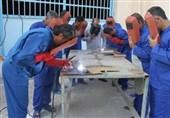 تشکیل شورای سیاست گذاری آموزشهای فنی و حرفه ای/ نداشتن مهارت بزرگترین علت معضل بیکاری در کشور