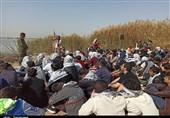 تلاش سازمان بسیج برای برقراری مجدد سفر راهیان نور