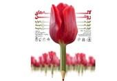 بزرگداشت 334 شهید دانشآموز و فرهنگی در مدارس استان قزوین برگزار میشود