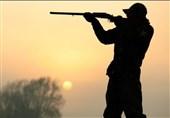 جزئیاتی از شناسایی و دستگیری سردسته شکارچیان غیرمجاز در فضای مجازی