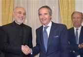 IAEA Chief Congratulates Iranians on Revolution Anniversary