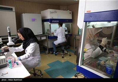 حضور زنان در عرصه های علمی