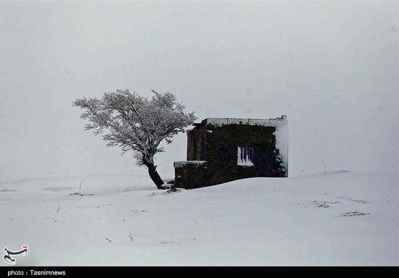 طبیعت برفی بجنورد به روایت تصاویر