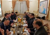 Iran's Shamkhani, Ukrainian Delegation Discuss Downed Plane