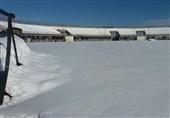 وضعیت اسفبار ورزشگاه سردار جنگل پس از بارش برف + تصاویر