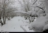 هواشناسی ایران 98/12/6| برف و باران کشور را فرا میگیرد
