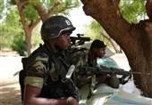 کشته شدن 120 تروریست در نیجر