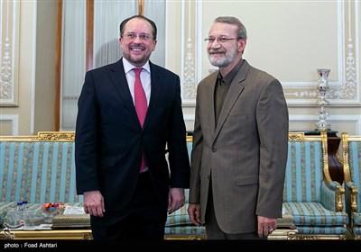 الکساندر شالنبرگ وزیر امور خارجه اتریش و علی لاریجانی رئیس مجلس ایران