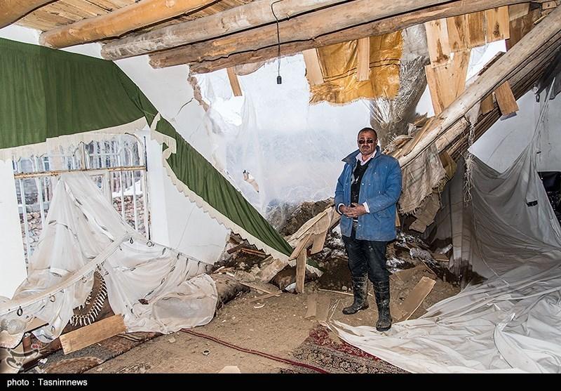 گزارش تسنیم از کمبود شدید چادر و اقلام اساسی در مناطق زلزلهزده «قطور» + فیلم