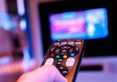"""آخر هفته تلویزیون؛ از """"مرغ تخم طلا"""" تا """"شاخه گلی برای عروس"""""""