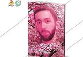 روایت زندگی شهید حدادیان منتشر شد