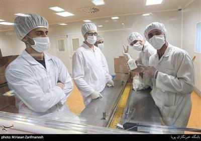 خط تولید مواد ضدعفونی کننده