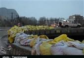 سیل در استان لرستان بدون تلفات فروکش کرد؛ همکاری خوب مردم، گروههای جهادی و مسئولان