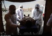 شهادت 5 تن از کادر درمانی نیروی زمینی ارتش در مقابله با ویروس کرونا