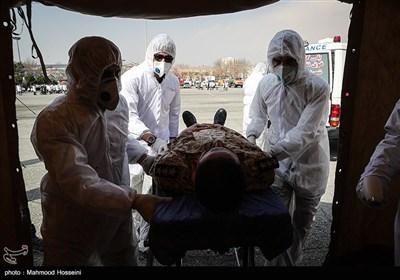 شهادت ۵ تن از کادر درمانی نیروی زمینی ارتش در مقابله با ویروس کرونا