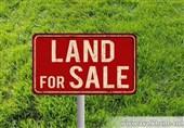 خرید زمین در شمال با قیمت استثنایی