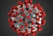 ایران میں کورونا وائرس کی تازہ ترین صورتحال| مزید 142 افراد جاں بحق