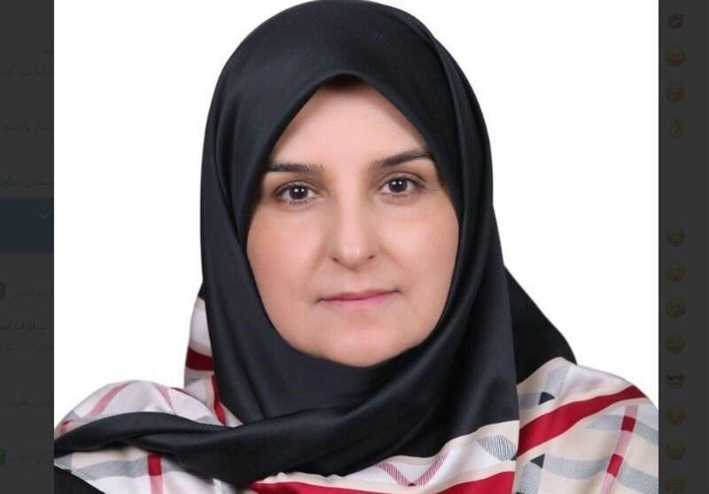 سفیر ایران در دانمارک: تحریمها مبارزه با کرونا را با مشکل مواجه کرده است