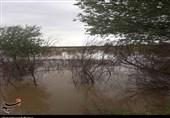 بالا آمدن آب در برخی مقاطع دز و کارون؛ پیشبینی دقیق شرایط در روزهای آینده کشاورزان را نجات میدهد + تصاویر