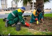 آیا شهرداری زنجان در نحوه تنظیم قرارداد کارگران فصلی تخلف کرده است؟ + فیلم