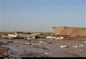 حوادث غیرمترقبه 2400 میلیارد تومان به استان کرمان خسارت زد