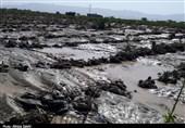 گزارش تصویری  روایت تسنیم از خسارتهای سیل در رودان